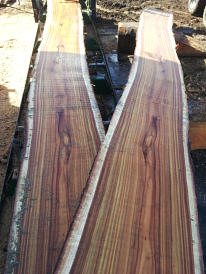 wooden planks and slabs at SBS