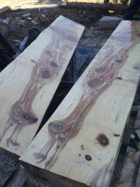 planks cut to order